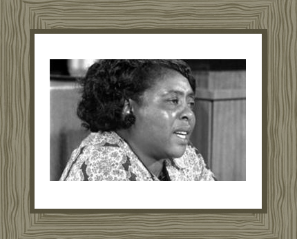Fannie Lou Hamer Photo