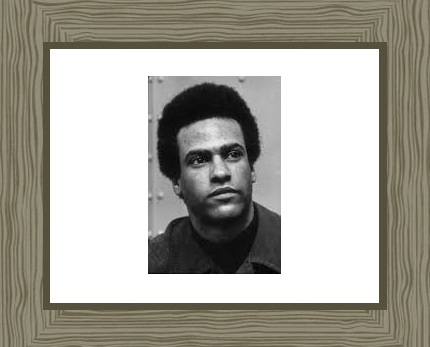 Huey Newton Photo