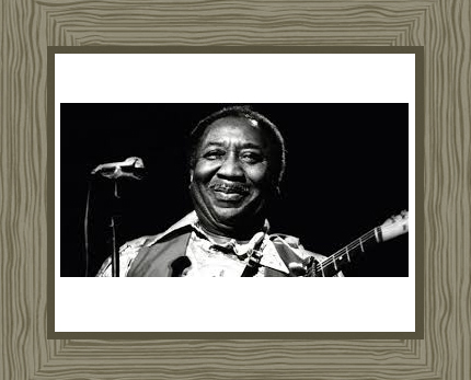 Muddy Waters Photo